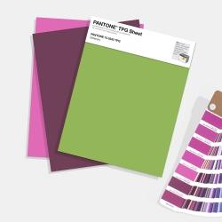 Pantone TPG Sheets