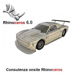 Consulenza 8 ore - Rhinoceros 6