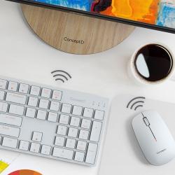 Tastiera e Mouse - ConceptD Combo Set
